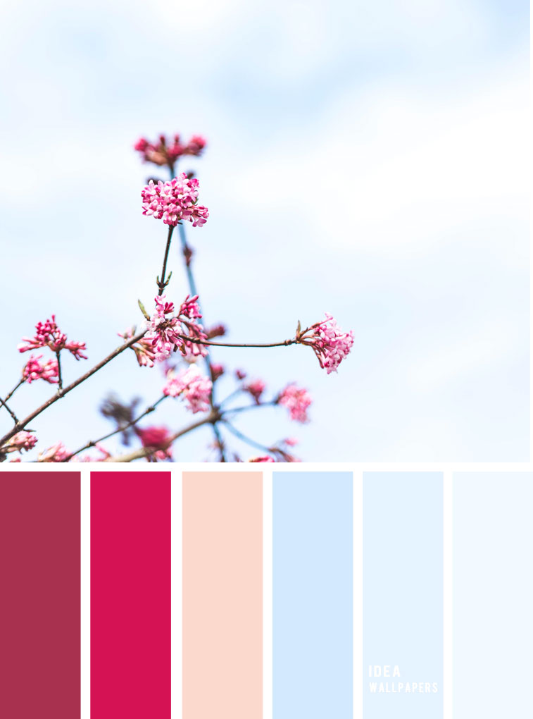 Berry Hues & light blue sky color inspiration
