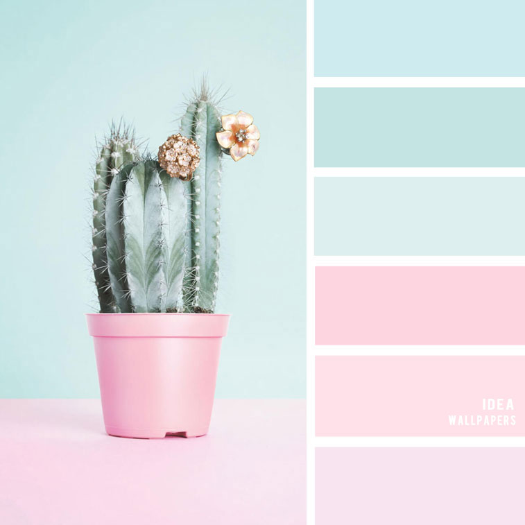 19 The Perfect Pink Color Combinations { Blush + light blue + Mint }