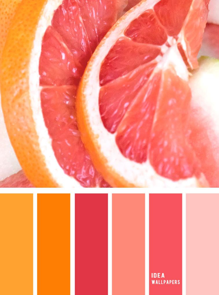 Pink citrus inspired color palette