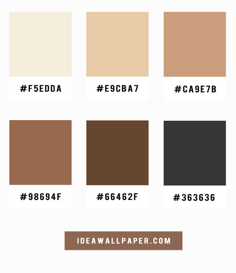 Shades of latte and coffee color scheme