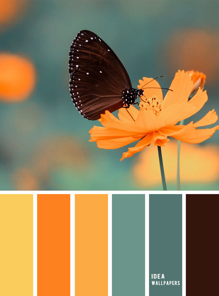 Yellow, orange , sage green color scheme , color palette #color #colorhues #colors #colorpalette