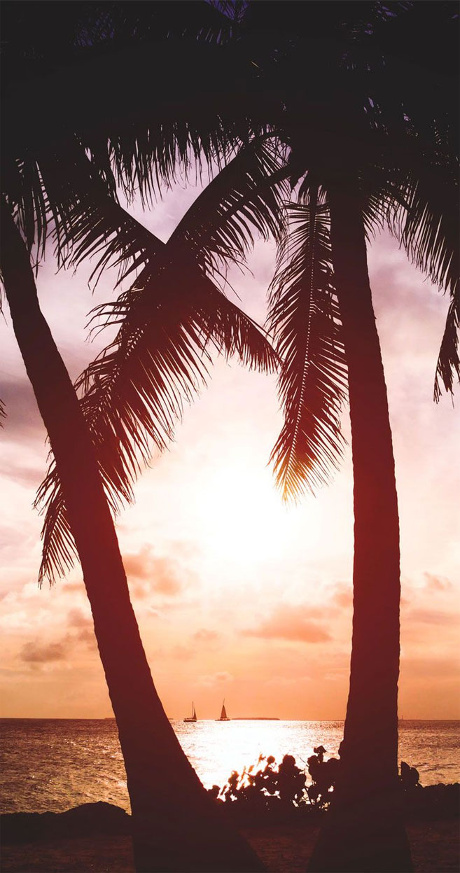 Sunset at the tropical beach iPhone wallpaper