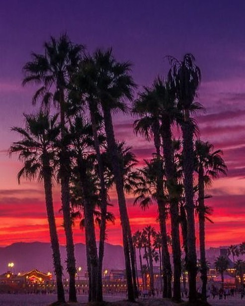 Purple and red orange sky