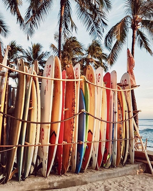 Hawaii windsurf and beach