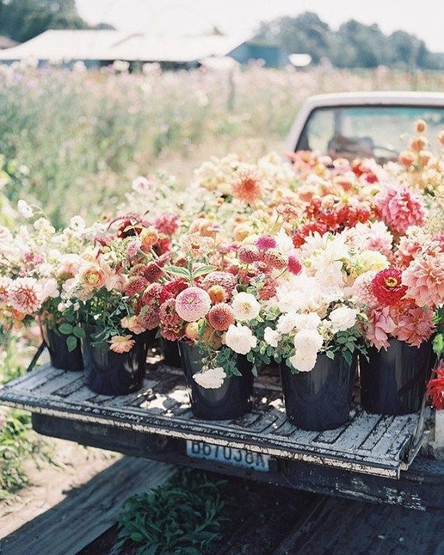 A pickup fulfilled with pretty flowers