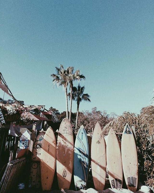 Windsurf California love
