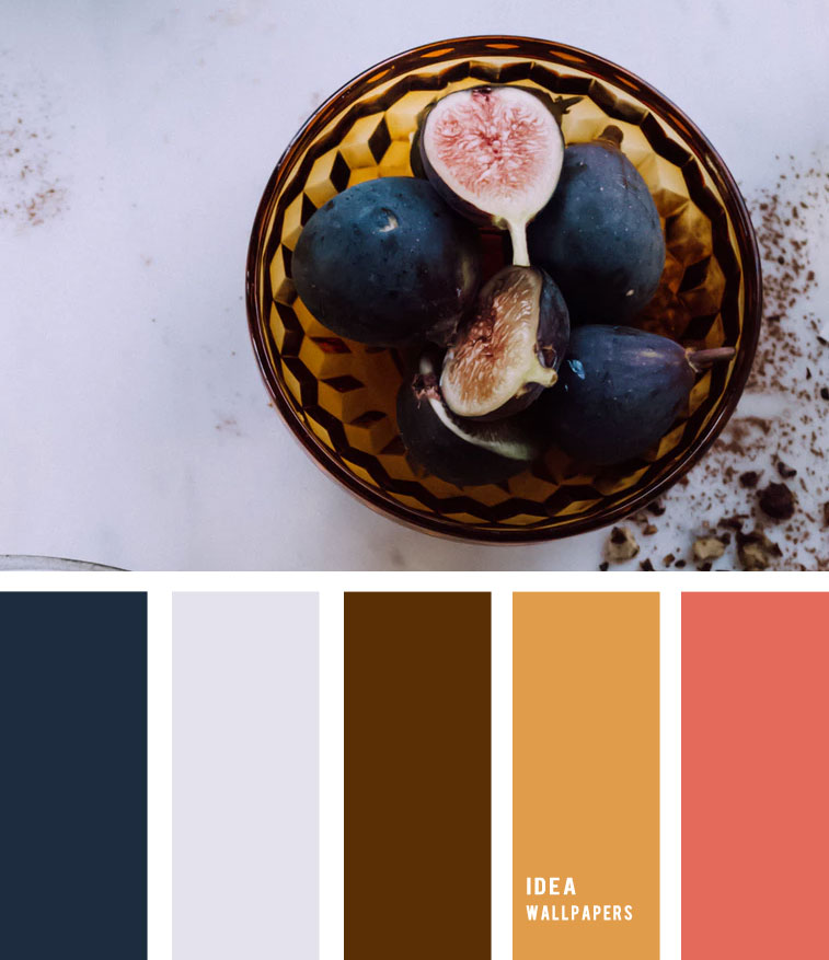 Fig and amber hues – Colour Palette 190521