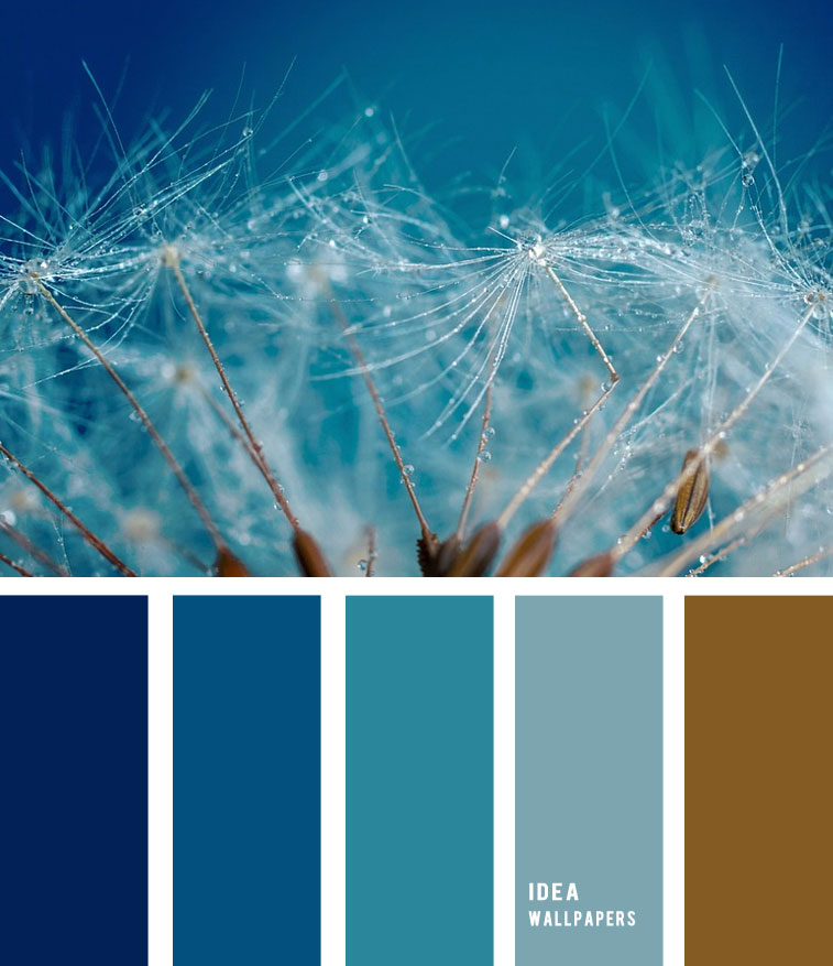 Dandelion Seeds Inspired Color Palette 1905213