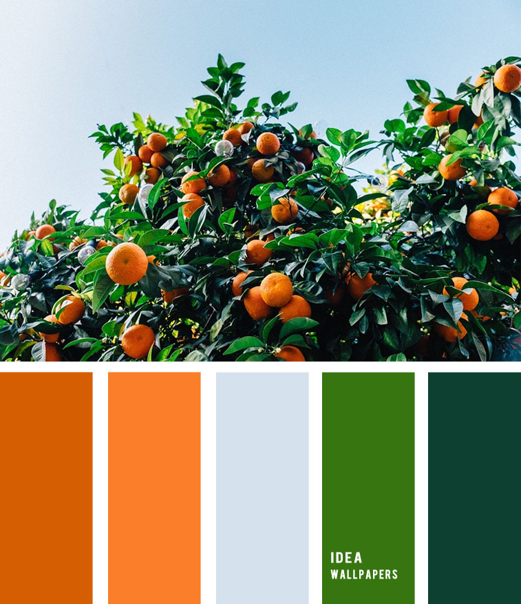 Tangerines Tree Inspired – Orange and Green Color Palette 1905215