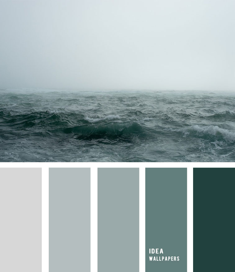 Sea fog and grey green ocean inspired color palette 19052212