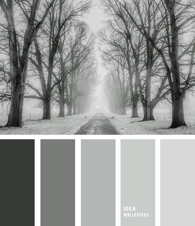 Grey Winter color palette 190522