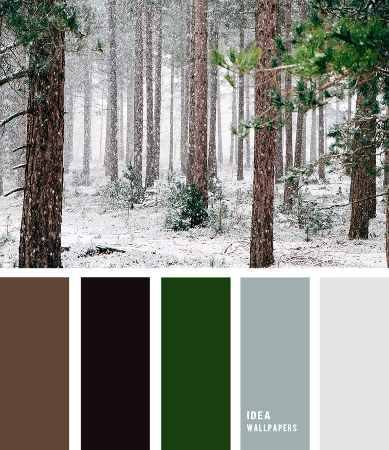 Pine Green and Grey Winter color palette