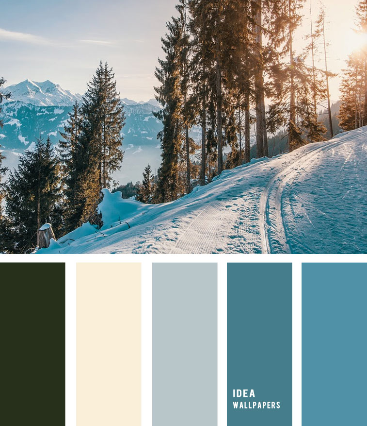 Blue Teal Winter color palette 1905226