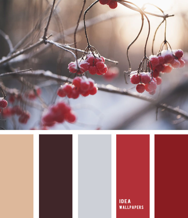 Red Berry winter color palette 1905227