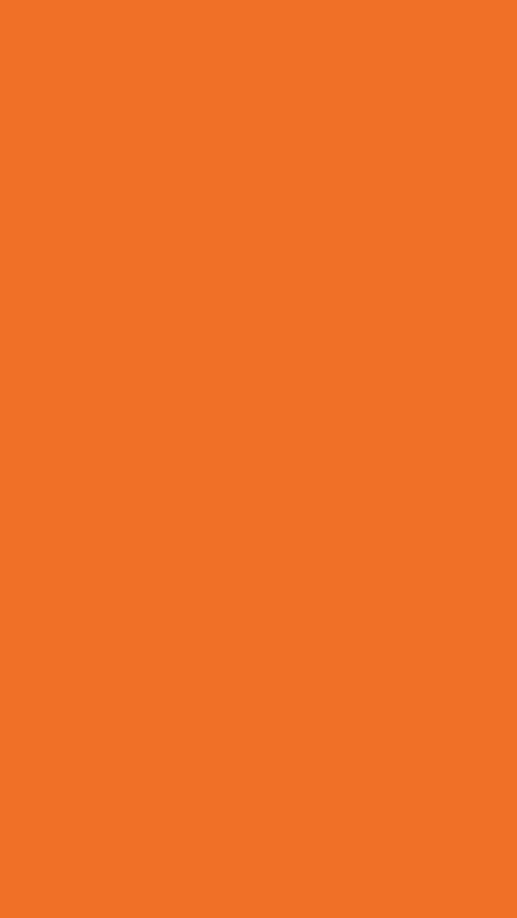 PANTONE 16-1358 : Orange Tiger