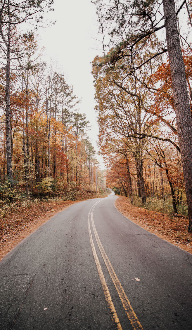 Beautiful autumn road