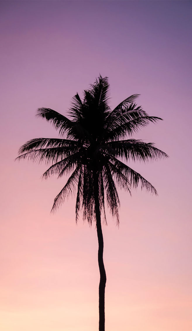 Mauve sky iPhone wallpaper