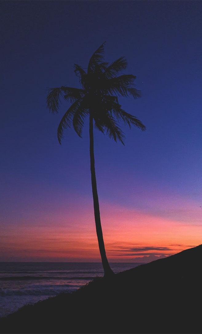 Indigo and peach sky
