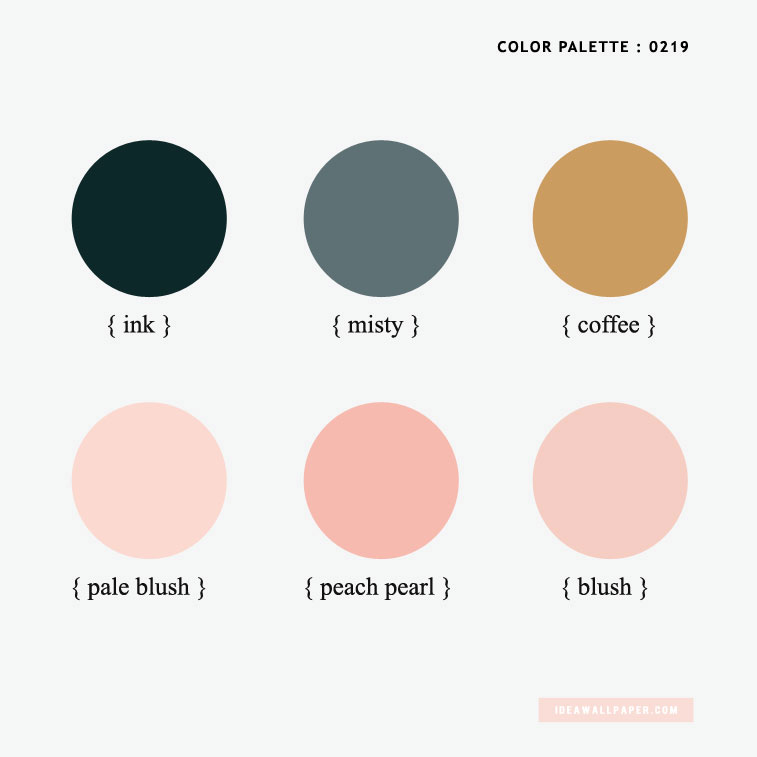 Color inspiration : ink + coffee + misty + blush + peach pearl