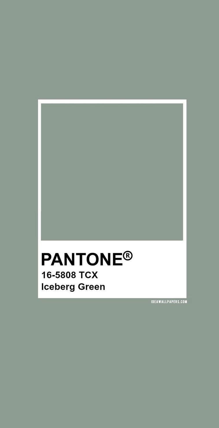 Pantone Iceberg Green