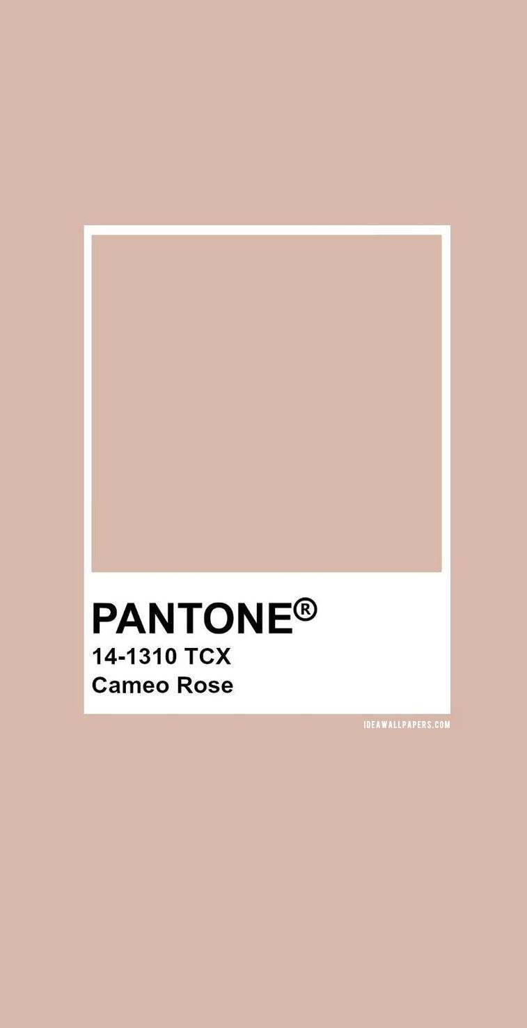 Pantone Cameo Rose : Pantone 14-1310