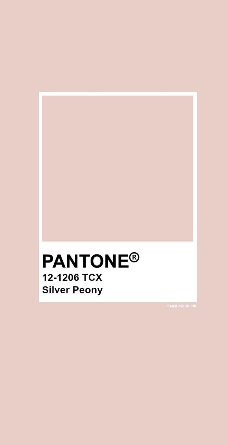 Pantone 12-1206 – Pantone Silver Peony