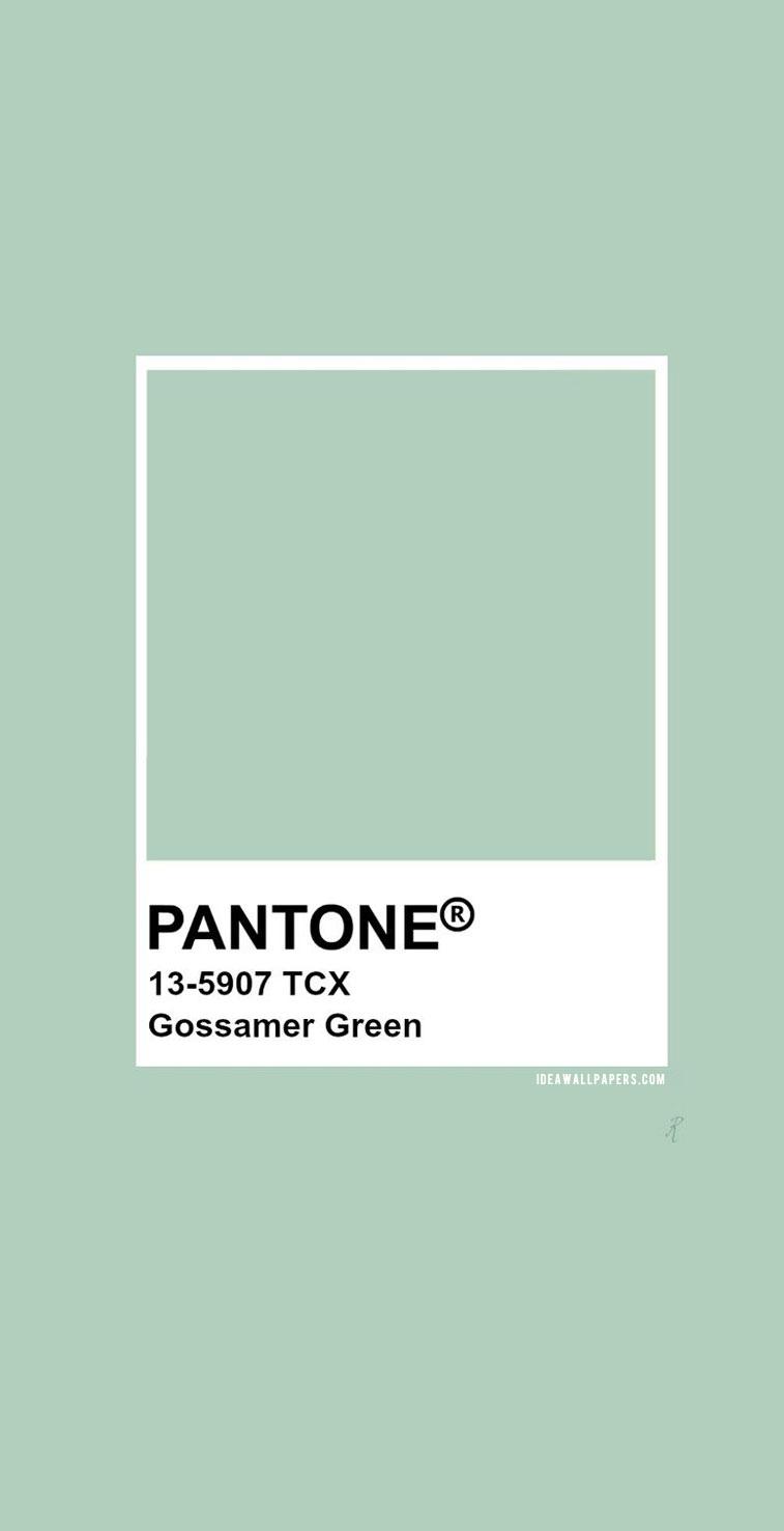 Pantone Gossamer Green : Pantone 13-5907
