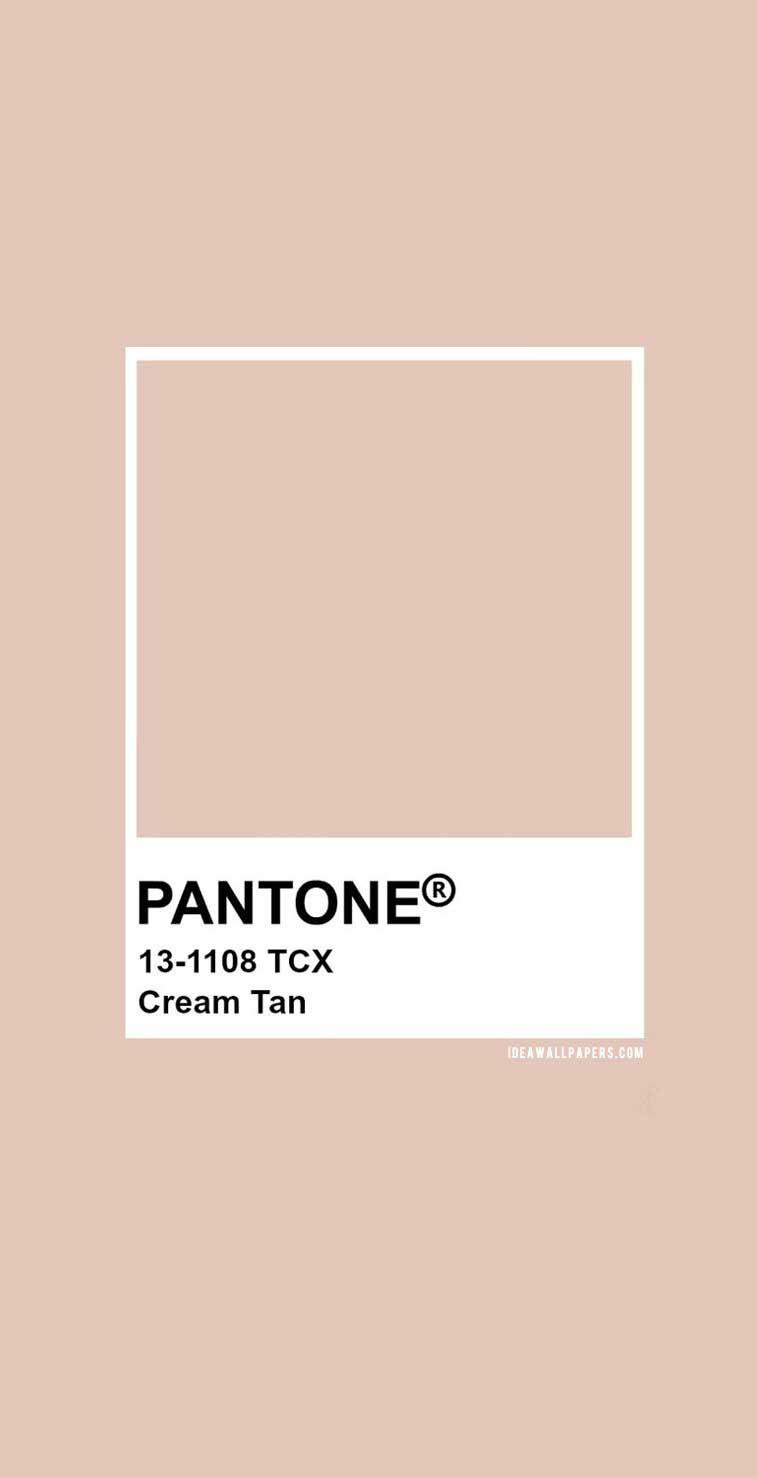 Pantone Cream Tan : Pantone 13-1108