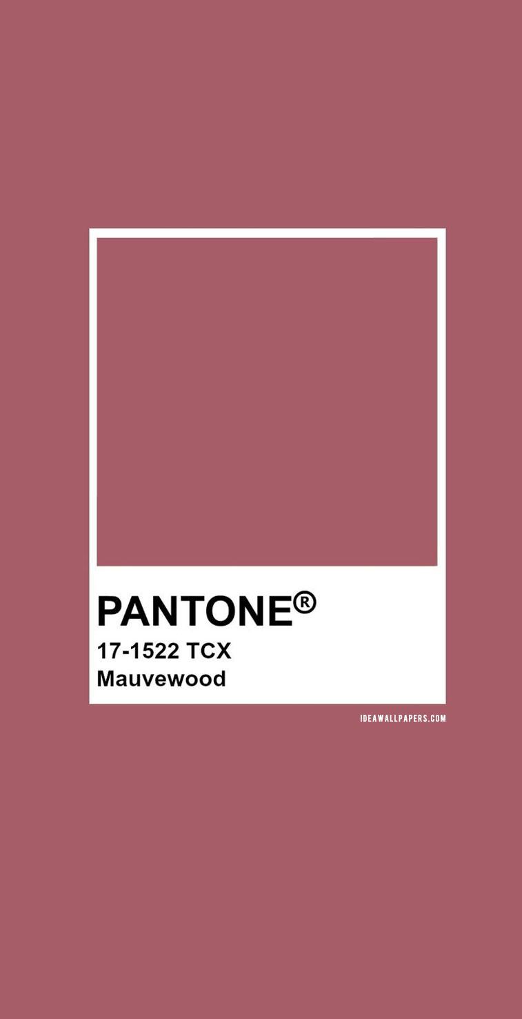 Pantone Mauvewood : Pantone 17-1522