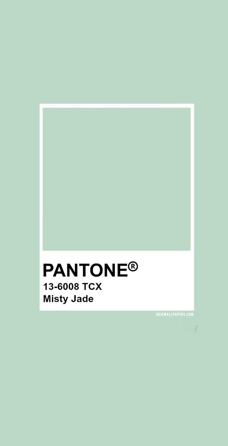 Pantone Misty Jade : Pantone 13-6008