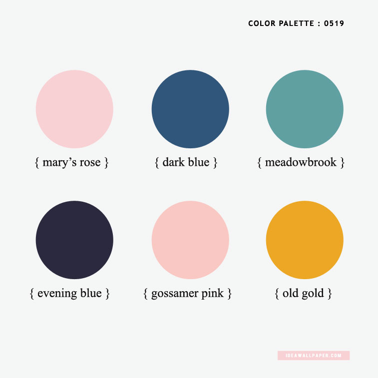 Color inspiration 0519 : Pink and Dark Blue Hues