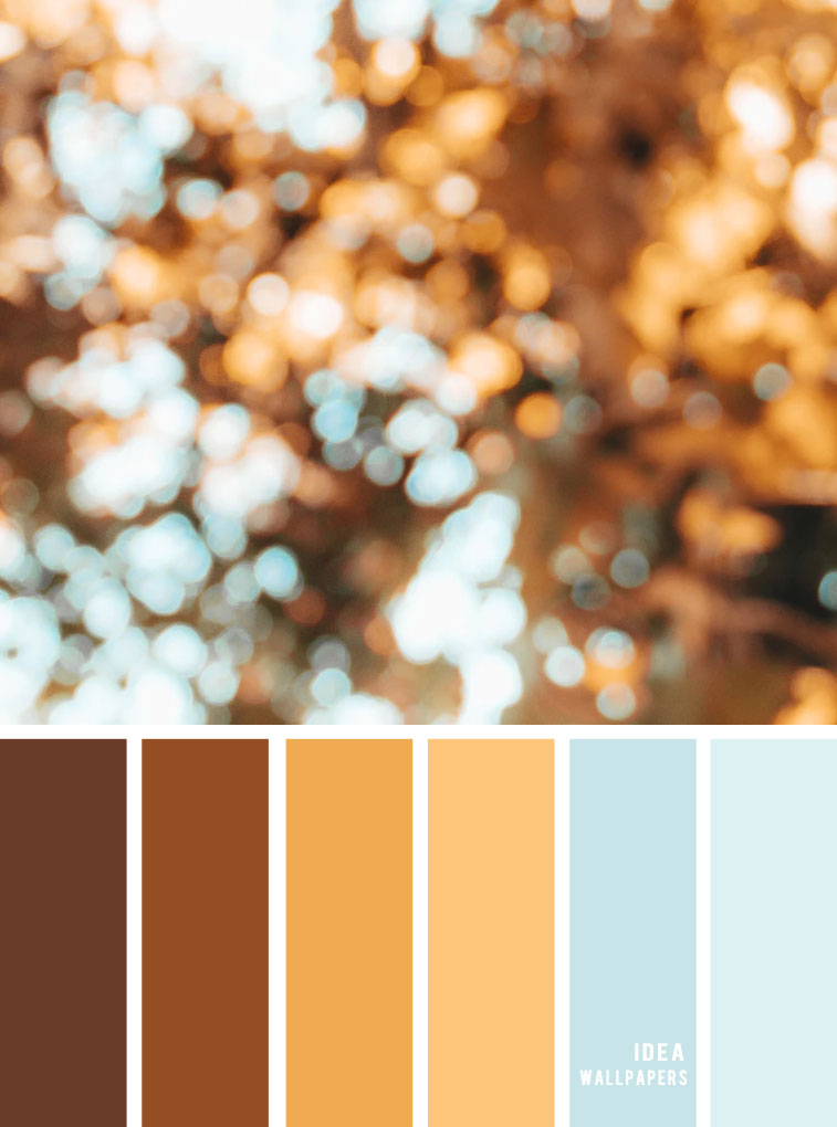 Color Inspiration : Golden brown + blue