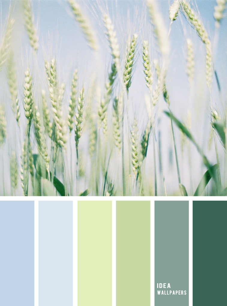 Color inspiration : Green and light blue sky
