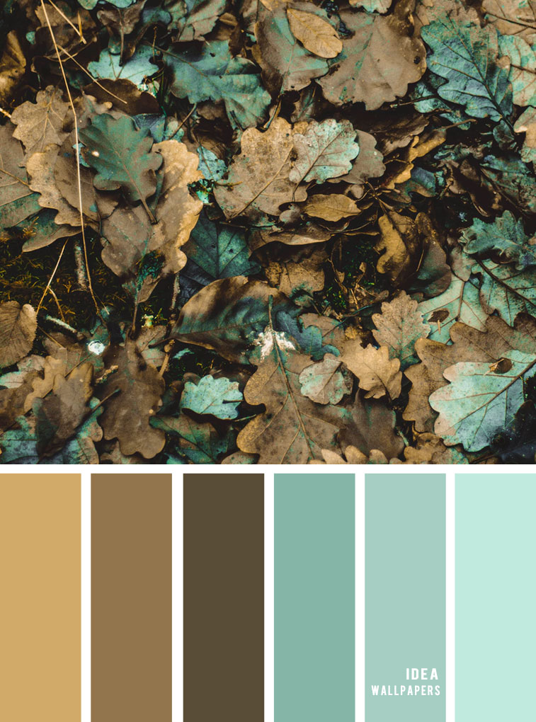 Color Inspiration : Dirty autumn leaf inspired { Teal + brown grey }