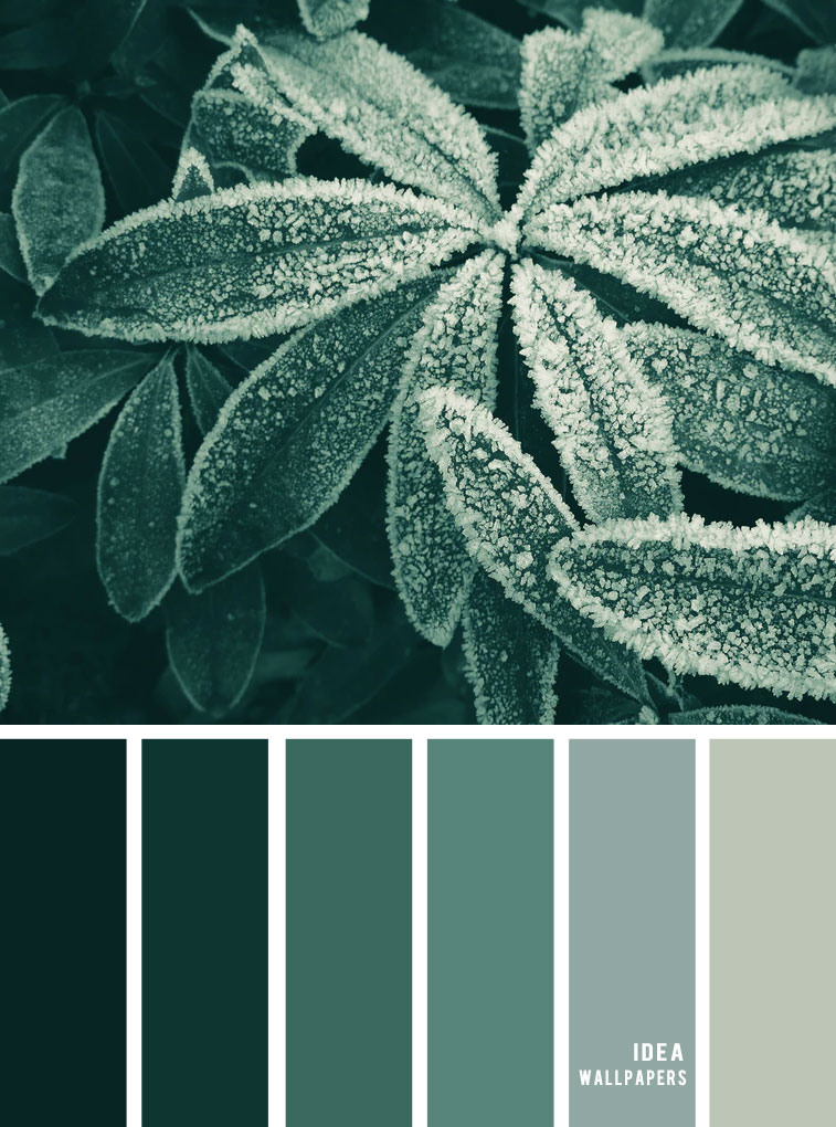 Winter Colour Inspiration : Green Hues