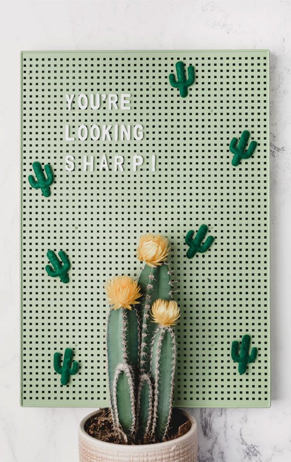 You're looking sharp! Cactus iphone wallpaper