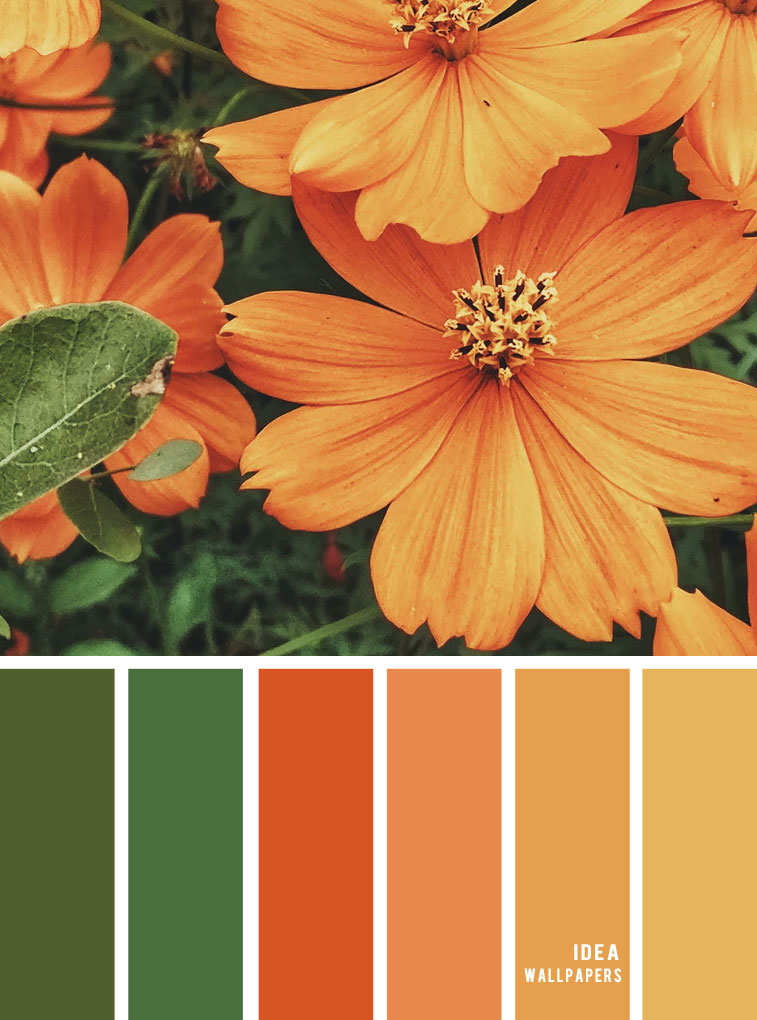 Color inspiration : Marigold and green color palette