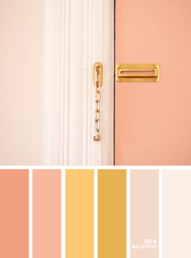 Color Inspiration : Blush + Gold & Peach Color Palette