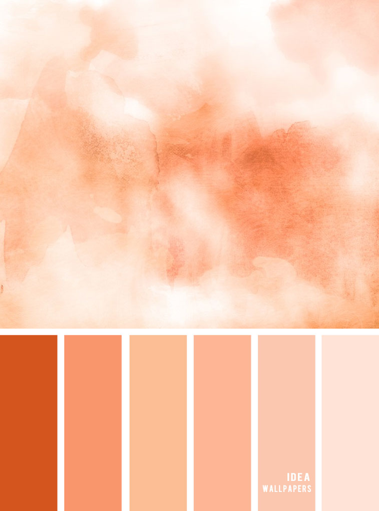 Colour Inspiration : Tones of Peach Color Palette