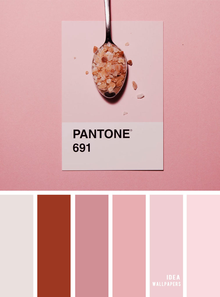 Color Inspiration : Red brick and pink color palette