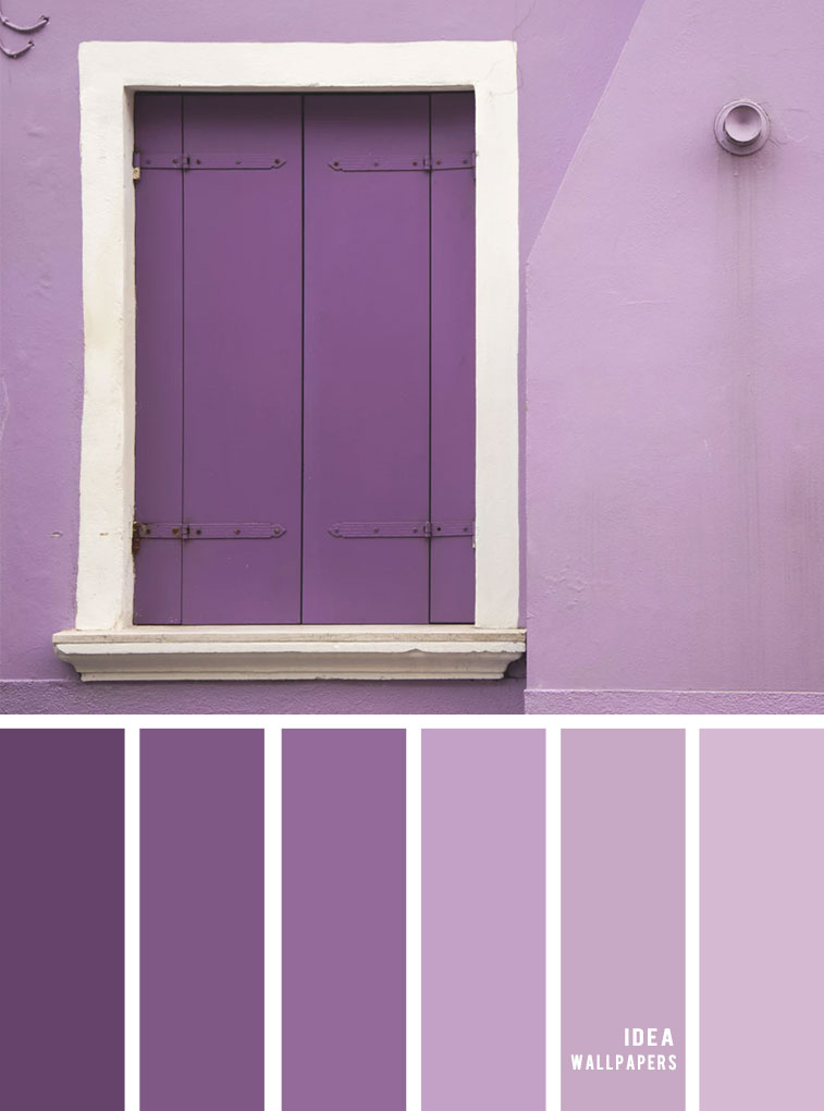 Colour Inspiration : Purple Hues