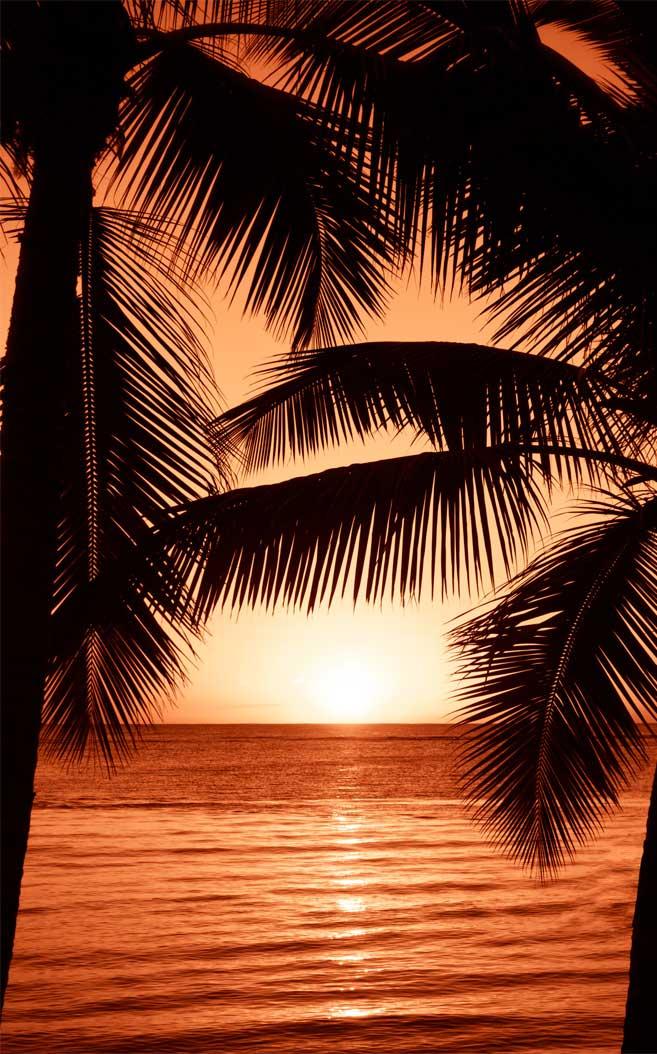Beautiful and romantic sunset