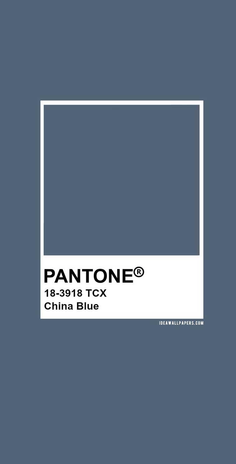 60 Pantone Color Palettes :  Pantone China Blue : Pantone 18-3918