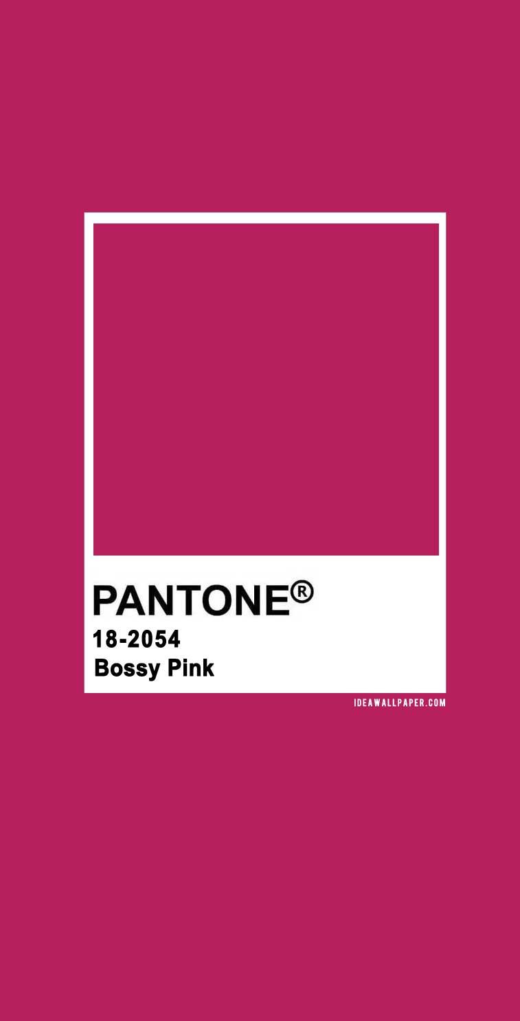 Pantone Bossy Pink 18-2054