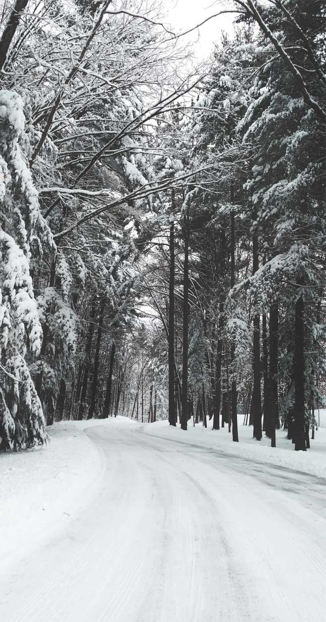 Really lovely winter wonderland photo