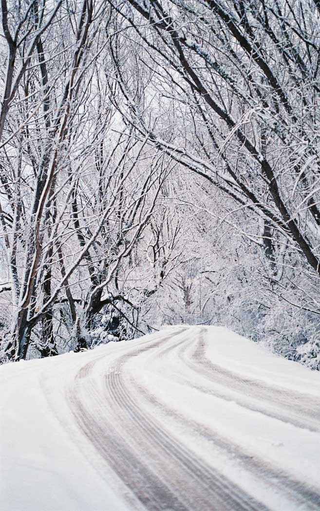 Winter wonderland snow everywhere