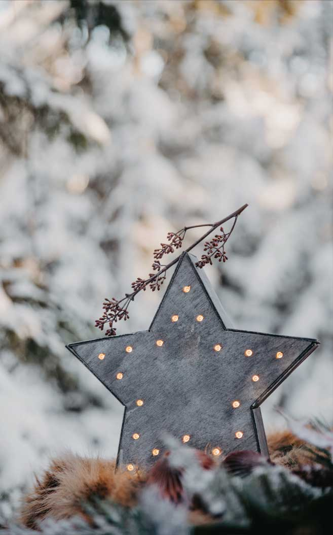 Star winter decoration