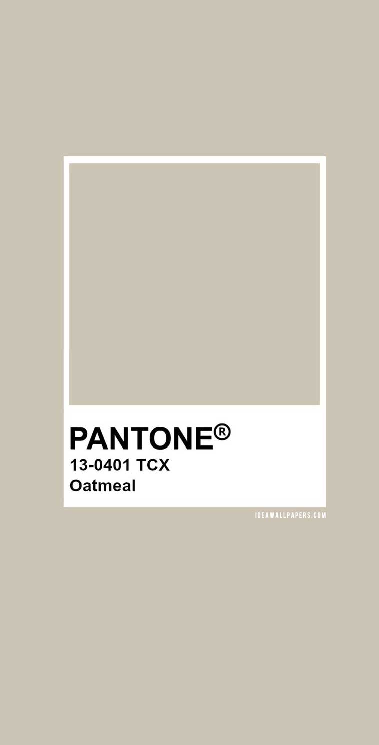 Pantone Oatmeal Pantone 13 0401 Idea Wallpapers Iphone