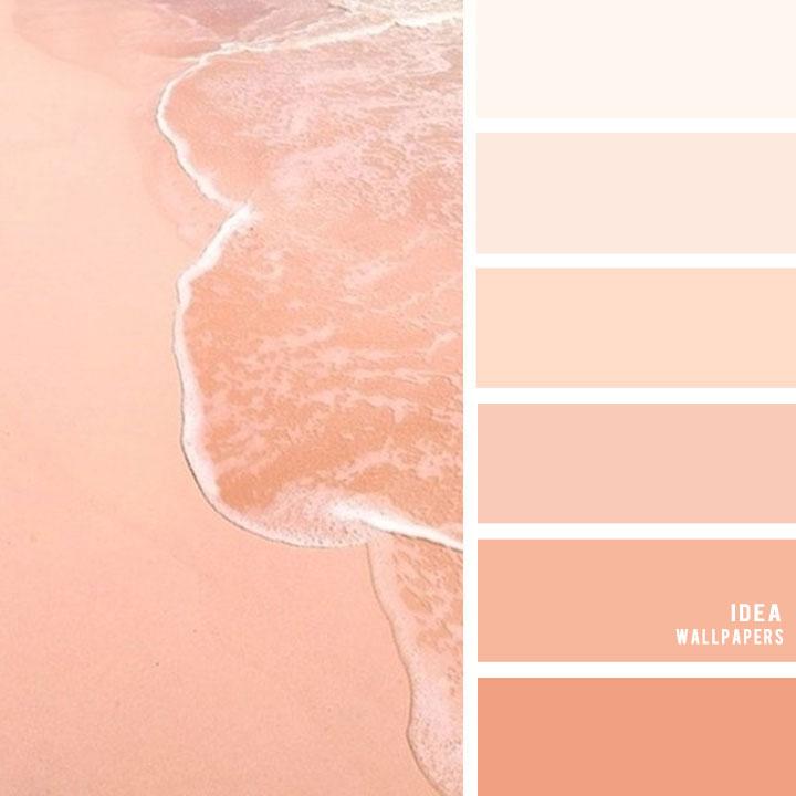 Peach Hues Color Palette