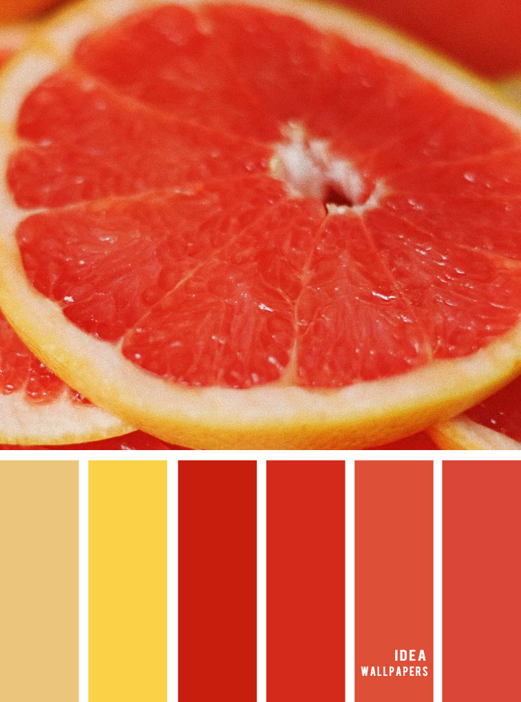 Colour Palette : Yellow Terracotta and orange red hues